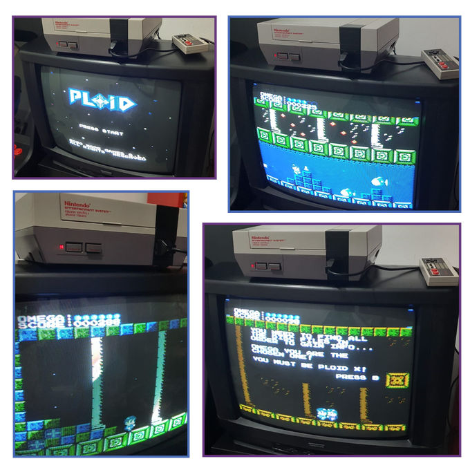 Fotos de PLOID executat a la NES