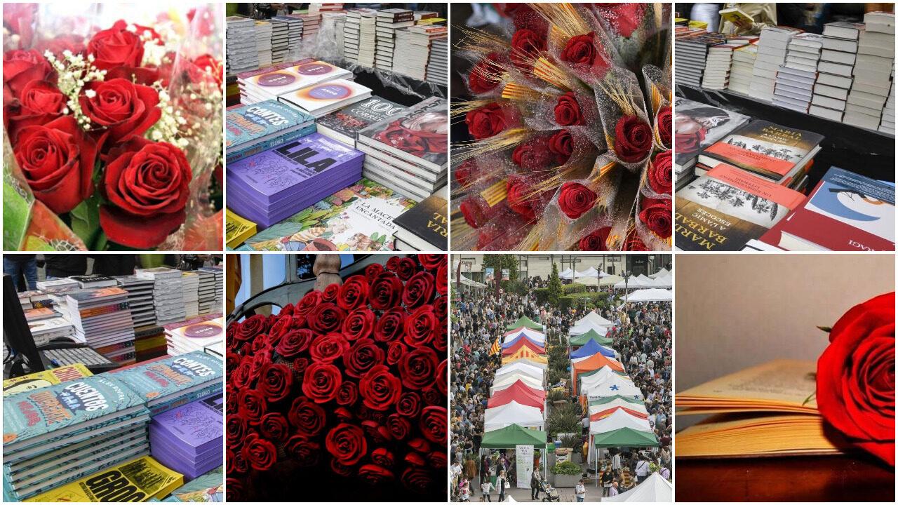collage Sant Jordi en Xarxa